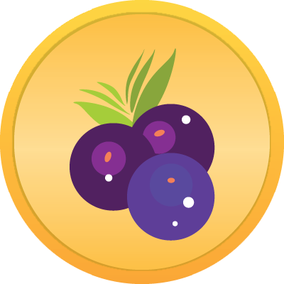 berrycoins.png